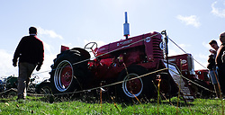 © Licensed to London News Pictures.26/08/15<br /> Egton, UK. <br /> <br /> A man walks looks at a collection of vintage tractors at the 126th Egton Show in North Yorkshire. <br /> <br /> Egton is one of the largest village shows in the country and is run by a band of voluntary helpers. <br /> <br /> This year the event featured wrought iron and farrier displays, a farmers market, plus horse, cattle, sheep, goat, ferret, fur and feather classes. There was also bee keeping, produce and handicrafts on display.<br /> <br /> Photo credit : Ian Forsyth/LNP