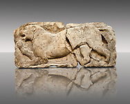 """Lion from the """"Satyr Hunting Wils Animals, freezes, 460 B.C. From Xanthos, UNESCO World Heritage site, south west Turkey. A British Museum exhibit GR 1848-10-20-2-9 (sculpture B 2902- 298). .<br /> <br /> If you prefer to buy from our ALAMY PHOTO LIBRARY  Collection visit : https://www.alamy.com/portfolio/paul-williams-funkystock/lycian-antiquities.html (TIP - Refine search by adding a suject or background colour as well).<br /> <br /> Visit our CLASSICAL WORLD HISTORIC SITES PHOTO COLLECTIONS for more photos to download or buy as wall art prints https://funkystock.photoshelter.com/gallery-collection/Classical-Era-Historic-Sites-Archaeological-Sites-Pictures-Images/C0000g4bSGiDL9rw"""