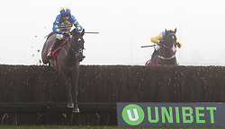 Dynamite dollars, (left) ridden by Harry Cobden jumps the last on the way to winning The 32Red.com Wayward Lad Novices' Chase during day two of 32Red Winter Festival at Kempton Park Racecourse.