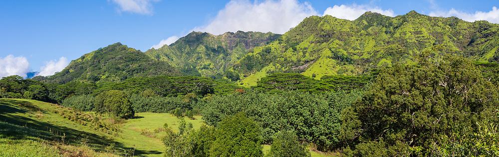 Panorama of the Makaleha Mountains, Kauai, Hawaii