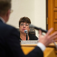 City Councilor Fran Palochak listens as Greater Gallup Economic Development Corporation Board President Tommy Haws speaks at a city council meeting Tuesday, Sept. 10 in Gallup.