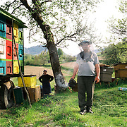 A beekeeper and his wife stand amongst their beehives, Glod, Maramures, Romania
