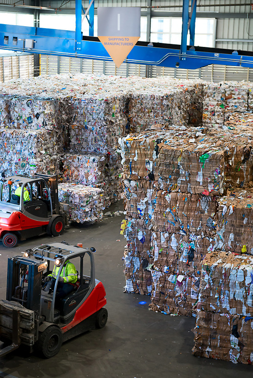 Forklifts move bales of paper to be recycled. Semis wait at a loading dock just out of frame.