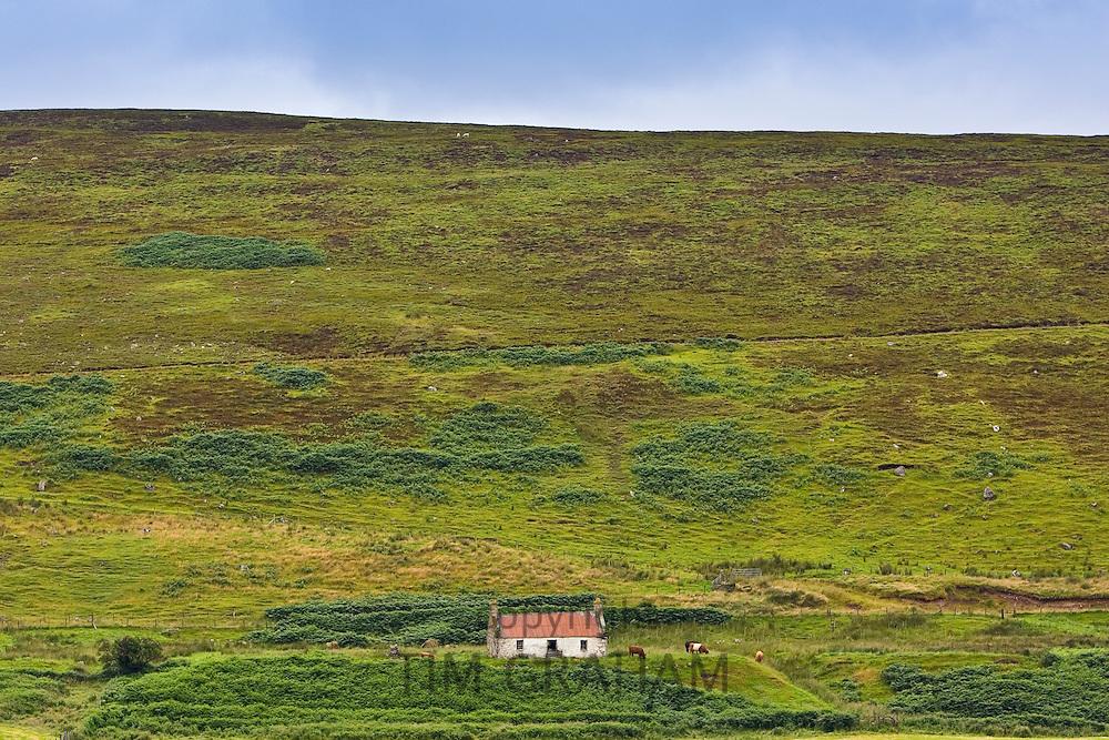 Abandoned croft in the Scottish highlands, Caithness, United Kingdom