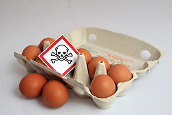 12.01.2011, Nach dem Verdacht einer Vergiftung mit Dioxin mit dem Giftsymbol markierte Eier im Eierkarton.EXPA Pictures © 2011, PhotoCredit: EXPA/ nph/  Albers       ****** out of GER / SWE / CRO ******
