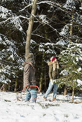 Friends in snowy forest with a saw searching a christmas tree, Bavaria, Germany