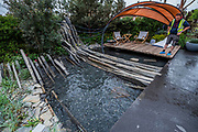 The Facebook Beyond the Screen garden - Press preview day at The RHS Chelsea Flower Show.