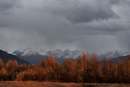 Fall colors adorn trees in Valdez, Alaska