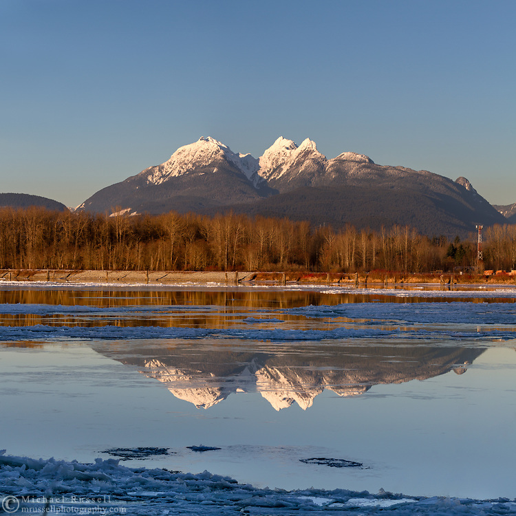 The Golden Ears mountains reflected in the Fraser River during a relatively rare cold snap in the Fraser Valley. This view is photographed from Brae Island Regional Park's Tavistock Point in Langley, British Columbia with the unusual circumstance of a partly frozen Fraser River in the foreground.  The Golden Ears (Mount Blanshard) are McPhaden Peak, Edge Peak and Blanshard Peak.