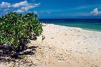 Riau Islands, Natuna Islands. Southwest Natuna. Small island just north of Kalimantan. On the beach.
