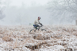 © Licensed to London News Pictures. 17/03/2018. London, UK. A cyclist braves the cold weather in Bushy Park as more snow falls over London. Photo credit: Rob Pinney/LNP
