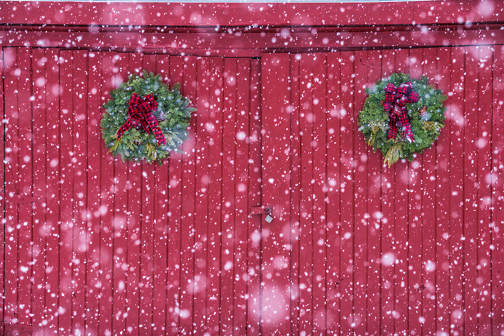 Pair of pine wreaths decorate red wooden doors, during snowstorm in winter, Bristol, NH