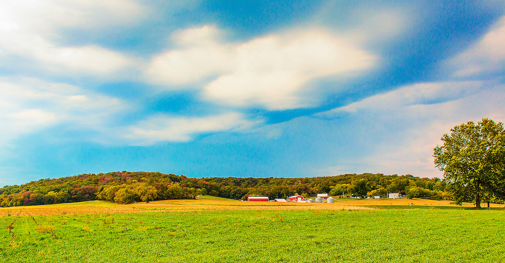 A field of rolling green under vibrant blue skies in Saint Charles Missouri