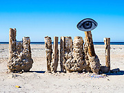 Wood Pillars with a Salt Buildup on the Shore of Bombay Beach