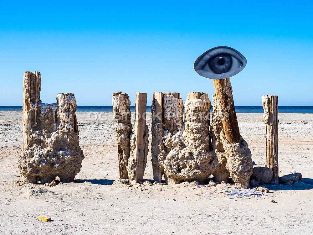 Wood Pillars with a Salt Buildup on the Shore of Bombay Beach