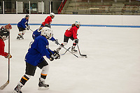 Lakes Region Womens Hockey Club at Laconia Ice Arena.  Karen Bobotas for the Laconia Daily Sun