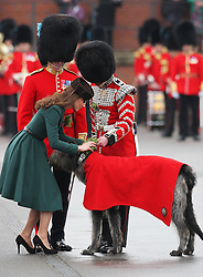 Catherine, Duchess of Cambridge gives Conmeal the regimental mascot of the Ist Battalion Irish Guards a  sprig of shramrock during a St Patricks Day Parade at Mons Barracks, Aldershot, Saturday 17th March 2012. .Photo by: Stephen Lock / i-Images
