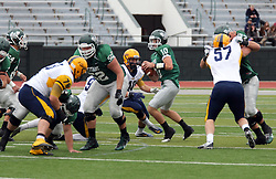 18 October 2014:  Garret Laflamme, Niall Mulcahy and Frank Toland (OL)  provide pass protection for Donovan Laible during an NCAA division 3 football game between the Augustana Vikings and the Illinois Wesleyan Titans in Tucci Stadium on Wilder Field, Bloomington IL