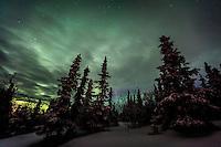 Aurora Borealis near Fairbanks, Alaska