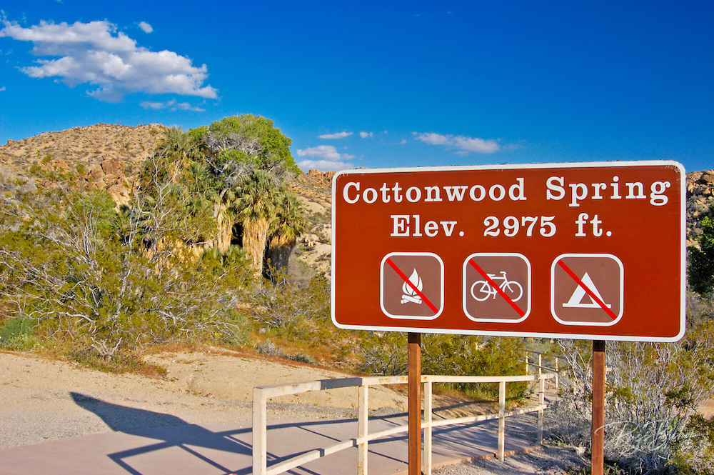 Trail sign and fan palms at Cottonwood Spring, Joshua Tree National Park, California