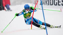 SWENN-LARSSONAnna of Sweden during 1st Run of 50th Golden Fox Audi Alpine FIS Ski World Cup Ladies Slalom, on February 2, 2014 in Podkoren, Kranjska Gora, Slovenia. (Photo By Urban Urbanc / Sportida.com)