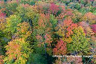 64776-02111 Aerial view of Hugoboom Lake in fall color Alger Co. MI