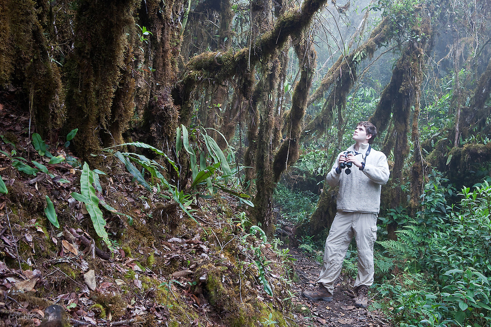 Rick Stanley birding at Wayqecha Cloud Forest Reserve on the Eastern Slopes of the Peruvian Andes.
