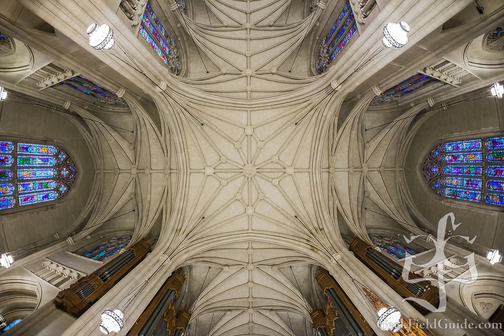 Duke Chapel ceiling