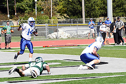 17 September 2011: Billy Lashonse picks off a pass intended for Mike Sloboda in the Titans end zone during an NCAA Division 3 football game between the Aurora Spartans and the Illinois Wesleyan Titans on Wilder Field inside Tucci Stadium in.Bloomington Illinois.