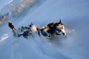 Alaskan huskies pull a sled through the snow in Kirkeness, Finnmark region, northern Norway