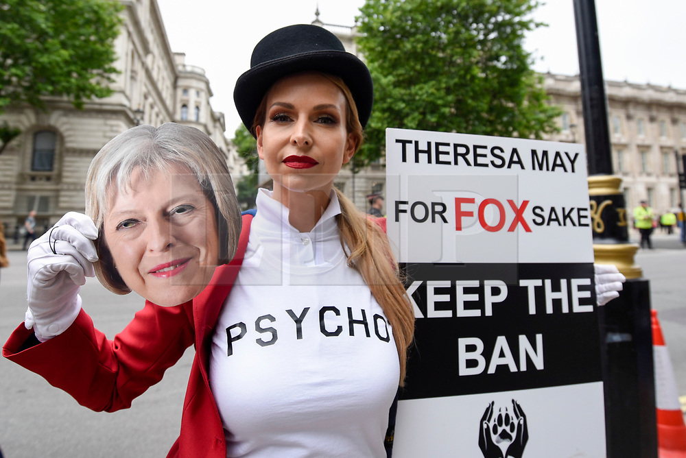 """© Licensed to London News Pictures. 29/05/2017. London UK. TV wildlife presenter Anneka Svenska joins demonstrators in an """"Anti-Hunting March"""" in central London, marching from Cavendish Square to outside Downing Street.  Protesters are demanding that the ban on fox hunting remains, contrary to reported comments by Theresa May, Prime Minister, that the 2004 Hunting Act could be repealed after the General Election.<br />  Photo credit : Stephen Chung/LNP"""