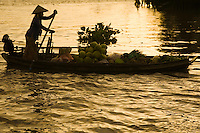 The Mekong River is the world's 10th longest river running for over 4000 kilometers from the Tibetan Plateau through China's Yunnan province, Burma, Thailand, Laos, Cambodia and Vietnam.  The Mekong basin is one of the richest areas of biodiversity in the world. More than 1200 species of fish have been identified.  The difficulty of navigating the river has meant that it has divided rather than united the people who live near it.