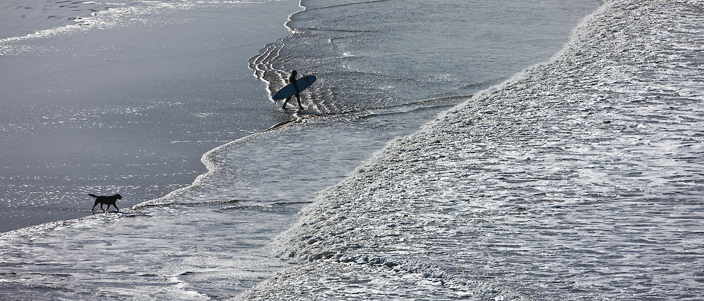 Lone surfer and his dog approach waves breaking onto the beach at Woolacombe, North Devon, UK