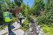 The Zoflora and Caulkdwell Childrens wild Garden by Adam White and Andree Davies - Preparations for the Hampton Court Flower Show, organised by teh Royal Horticultural Society (RHS). In the grounds of the Hampton Court Palace, London.