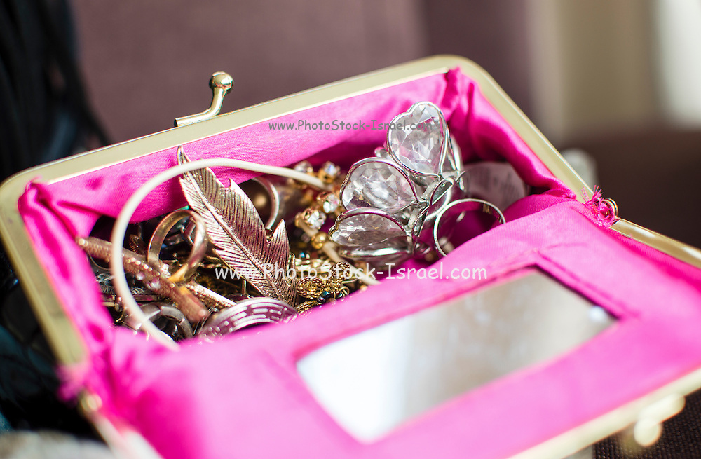 Fashion Accessories bag