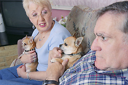 Man with Alzheimer's disease sitting on sofa with wife and pet dogs,