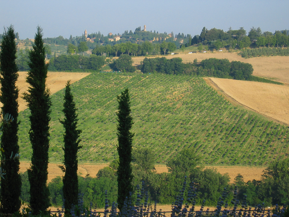 Tuscan countryside with farms and fields, Italy