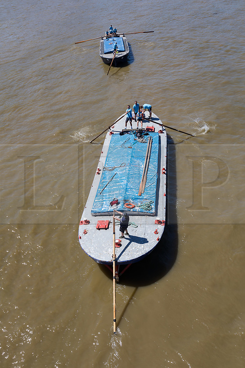 © Licensed to London News Pictures. 30/06/2018. London, UK.  Competitors take part in the 43rd annual Thames Barge Driving Race. Crews drive, 30 ton barges that are up to 100 years old using 15 feet long oars along a 7 mile course, starting in Greenwich and finishing in Westminster. The event commemorates the skills of traditional Thames Waermen and Lightermen who used to move freight around on the Thames by barge, under the power of oars. Photo credit: Vickie Flores/LNP