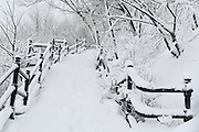 Snow covered stairs of Mont Royal Park in Winter, Parc du Mont Royal, Montreal, Quebec, Canada
