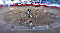 Bullfight, Guadalajara, Mexico. (Photo © Jock Fistick)