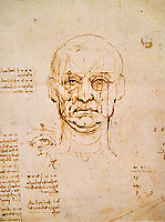 Italie, Turin, Biblioteca Reale, Leonard de Vinci, Étude des proportions du corp humains // Italy, Turin, Biblioteca Reale, Leonardo da Vinci, Study of the proportions of the human body