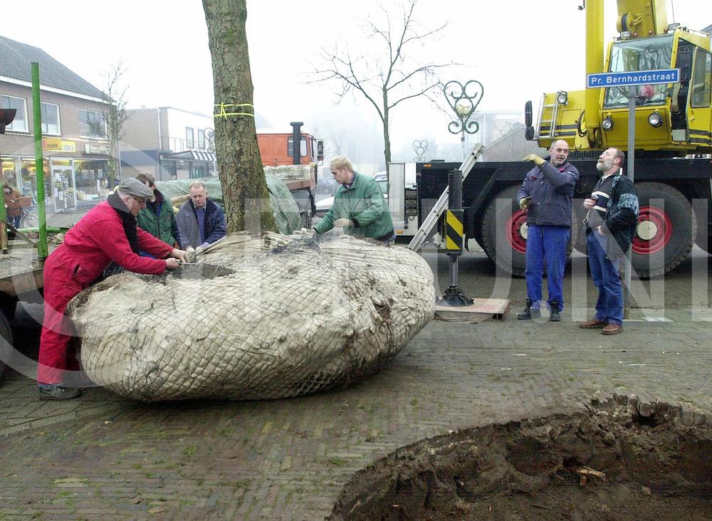 fotografie frank uijlenbroek©2001 frank brinkman.011212 heino ned.kastanje boom plaatsen aan de marktstraat met kraan.fu011212_02.sa