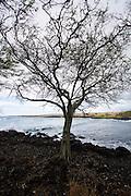 Paihaa Bay, South Point, The Big Island of Hawaii