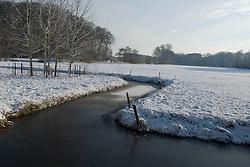 winter, sneeuw, ijs 's-Graveland, Wijdemeren Winter, koud, cold snow, sneeuw, winter, cold, wit, white