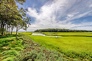 Marsh, Sag Harbor Bay,  North Haven, Sag Harbor, NY, Long Island