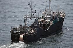 ATLANTIC OCEAN 13NOV14 - Fishing activities in the Atlantic Ocean off the coast of Guinea-Bissau. Stern trawler Seo Jin 1, callsign 6KCC, home port Busan, seen fishing inside the 20 metre isobath area.<br /> <br /> jre/Photo by Jiri Rezac / Greenpeace<br /> <br /> <br /> © Jiri Rezac 2014