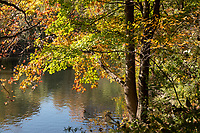 Autumn landscape at The Pool in Central Park