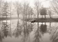 A line of trees reflected in the calm surface waters of a pond on a foggy morning in southwestern Ohio, USA