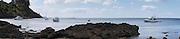 Panoramic view of Mawhitipana Bay, Waiheke Island, New Zealand. moored boats.