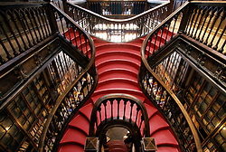 Europe, Portugal, Porto (also known as Oporto). Stairs in historic bookstore